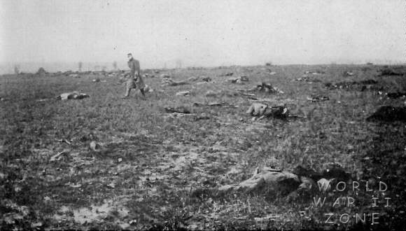 Field_of_French_and_German_dead_in_Champagne