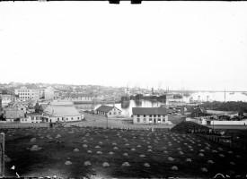 sumarið1930