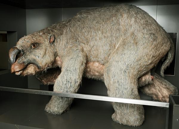 120621-diprotodon-giant-wombat-720a.photoblog600