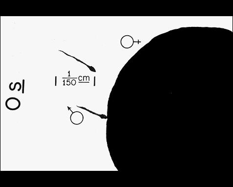 027 - Hbdrs