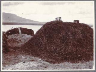 Hundrað magnaðar ljósmyndir frá Íslandi um aldamótin 1900 eftir Frederick W.W. Howell