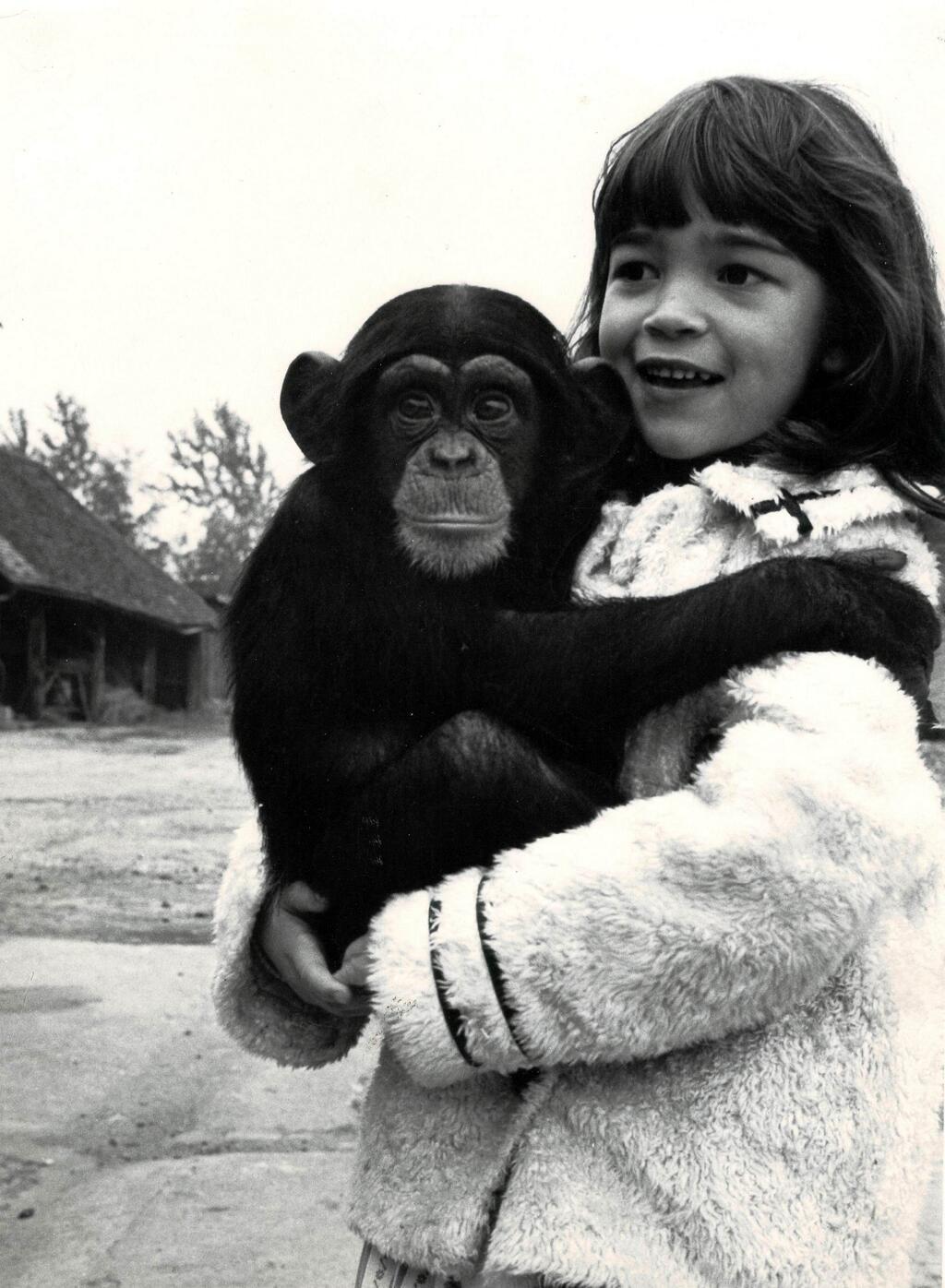Önnur mynd af Vivian með simpansa, úr tökum á 2001: A Space Odyssey