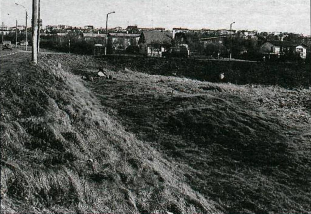 Hjónadysjar 1988 fyrir uppgröft.