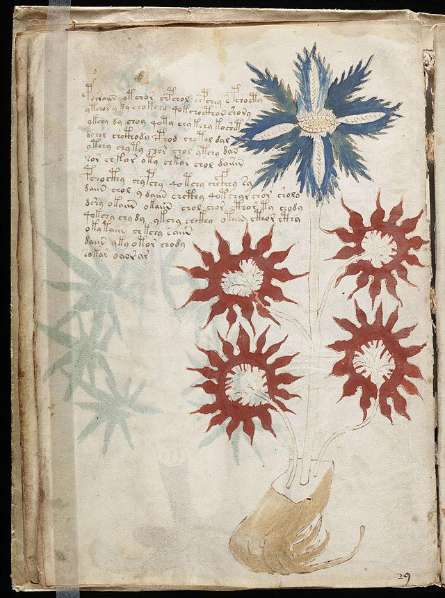 640px-Voynich_Manuscript_(32)