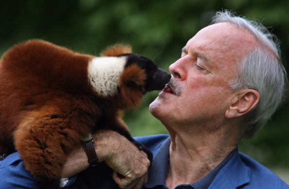 Cleese hittir lemúrinn Colin á Madagaskar.