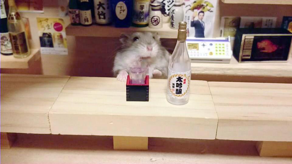 hamster-bartender-miniature-bar-kawanabesatou-23