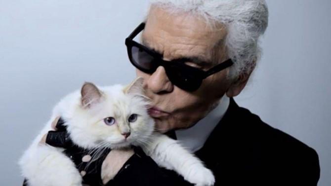 Karl Lagerfeld útnefnir kött sem erfingja sinn