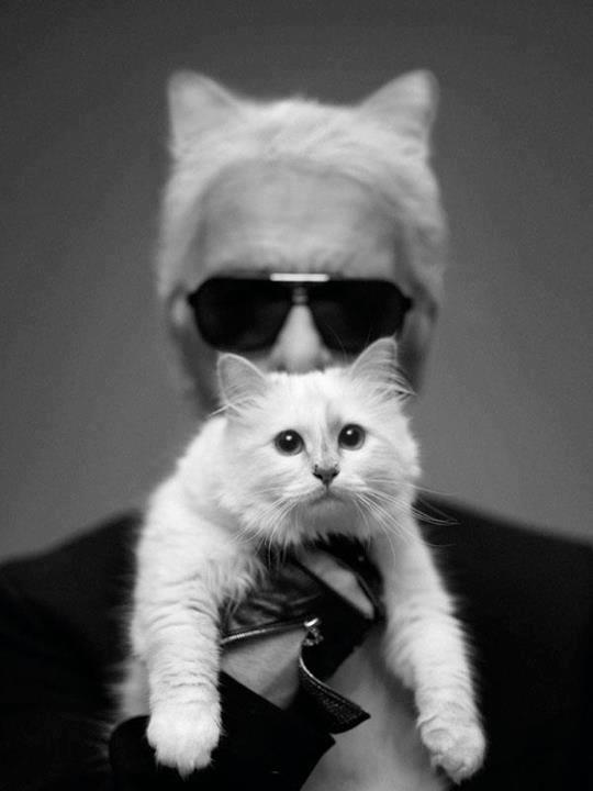 Choupette og Karl Lagerfeld.