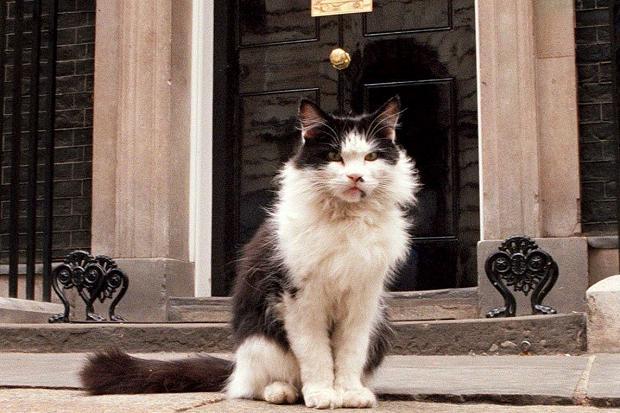 Humphrey var ekkert lamb að leika sér við.