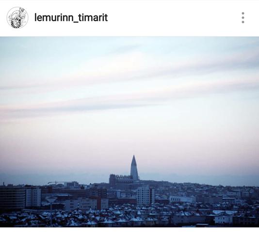 Lemúrinn er kominn á Instagram!