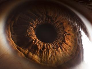 Desiertos oculares