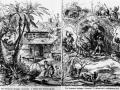 Anti-emigration_propaganda_1869