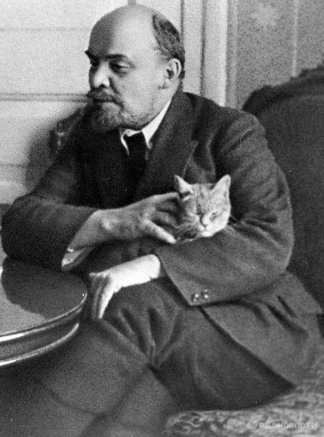 Lenín og kisi, 1920