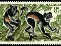 GandonMalagasyC68IndriLemurs