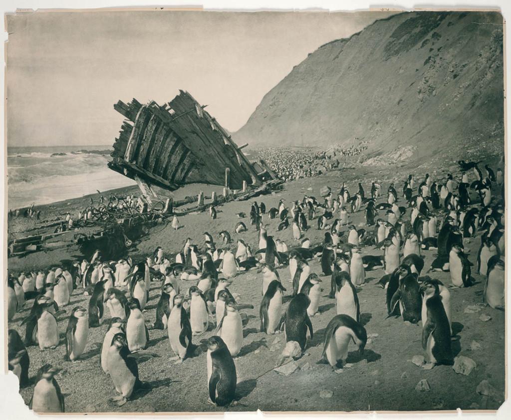 Fotografías de la Antartida hace 100 años A190009h-1024x842
