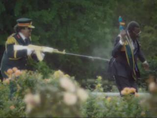 Aðdáendur Mugabes reiðir vegna kjúklingaauglýsingar