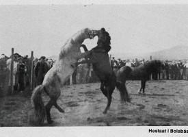 Hestaatið á Þingvöllum 1930