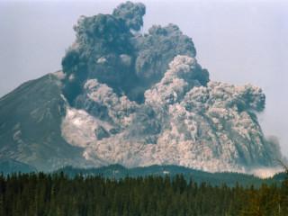 Gosið í Mount St. Helens, Harry Truman og kettirnir hans