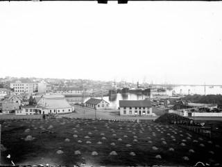 Höfnin í Reykjavík sumarið 1930