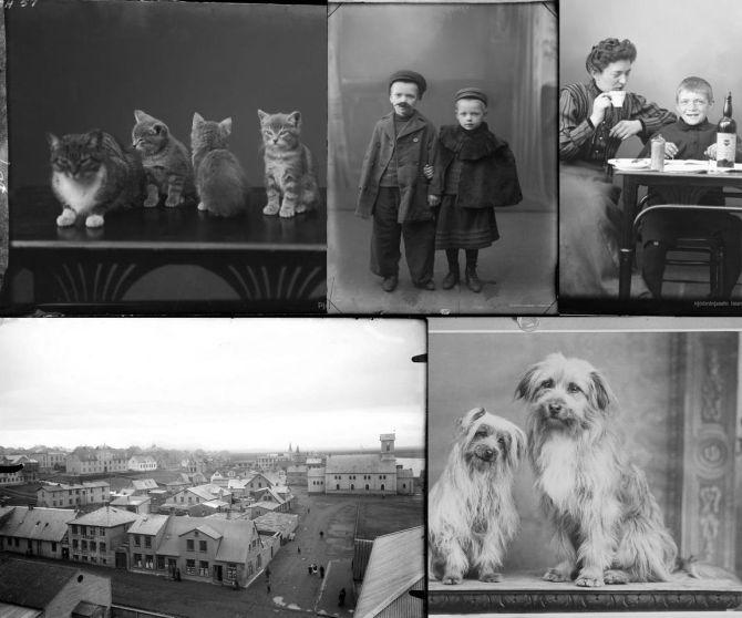 Hundar, kettir, börn og hús: Ljósmyndir Gunhild Thorsteinsson frá um 1910