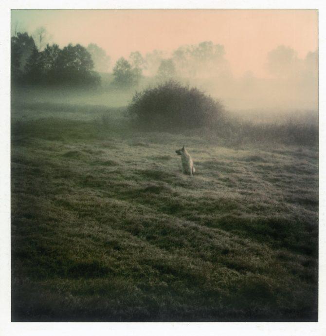 """Andrei Tarkovsky tók Polaroid myndir til að """"stöðva tímann"""""""