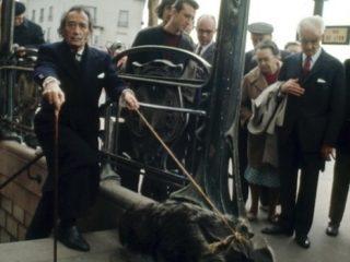 Salvador Dalí mætir í sjónvarpssal með mauraætu