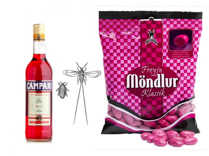 Freyju-Möndlur, Campari og kaktuslús