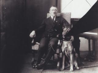 Eva Braun hataði hundinn sem Hitler elskaði