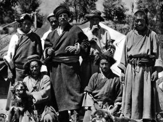 Svíi í Tíbet