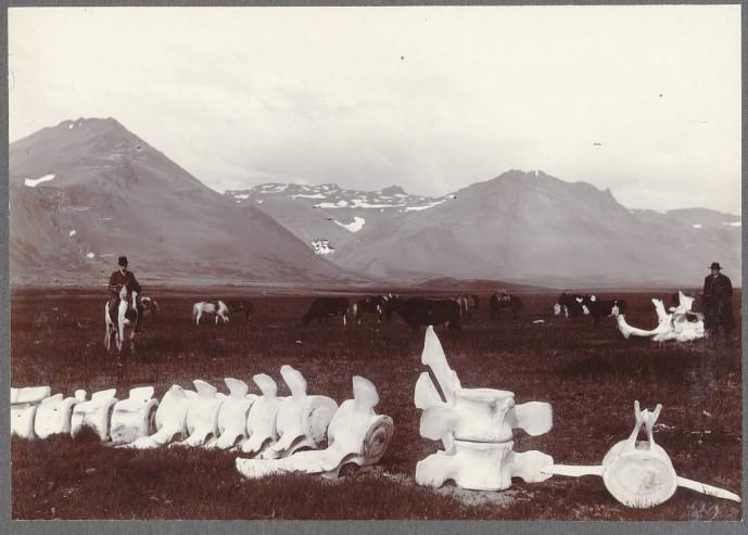 Búðir á Snæfellsnesi, um 1900