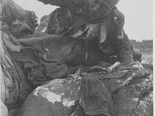 Hermennirnir sem frusu í hel, Stalíngrad árið 1943