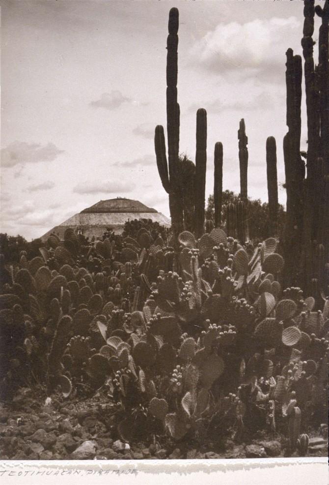 Borg guðanna í Mexíkó
